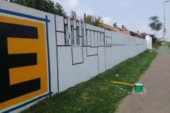 Bulte Mural Progress - Thusi Vukani (3)