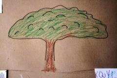 Mimosa School Artworks (8)